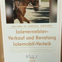 Starterset für Ihre Solekammer Pferde Inhalation Soletherapie Solebox TotesMeer